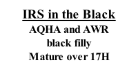 IRS in the Black AQHA and AWR black filly Mature over 17H